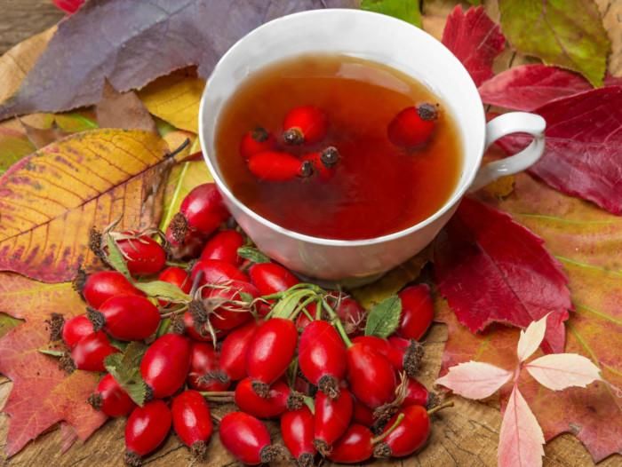 Чай із шипшини корисні властивості і протипоказання - BLOGINI